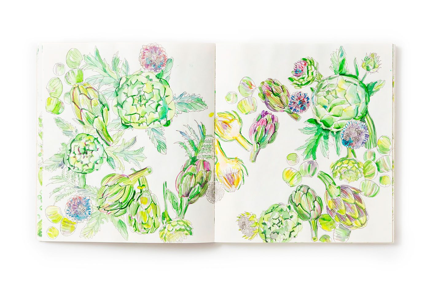 Limited edition, Edible Paradise: A Coloring Book of Seasonal Fruits and Vegetables (Rizzoli)